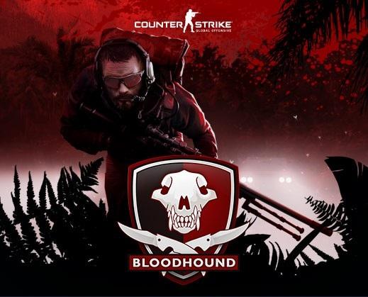 cs-go-bloodhound